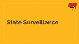 State Surveillance Slides