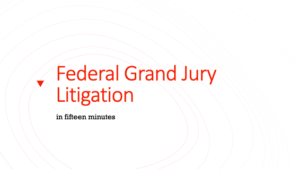 Federal Grand Jury Litigation Slides